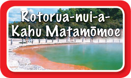 Rotorua-postcard